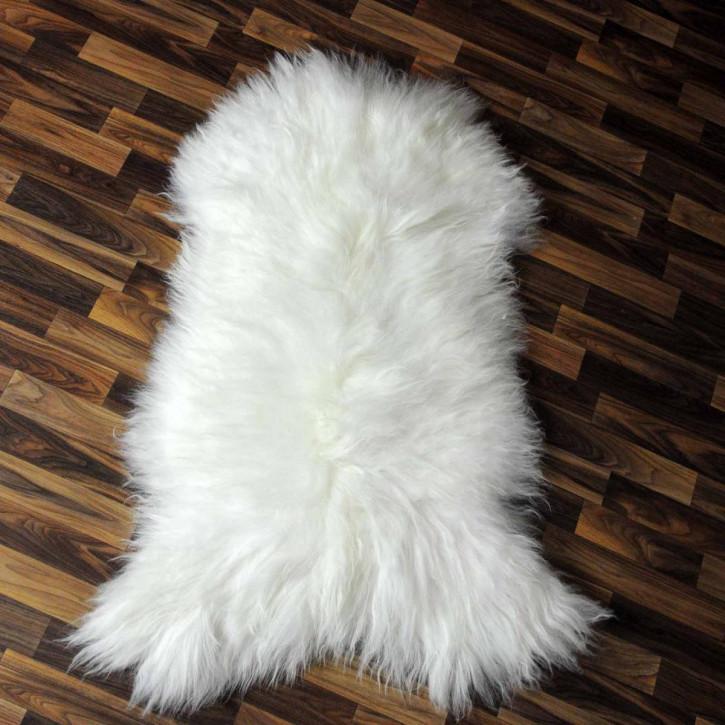Hirschfell Hirsch 170x150 deer Jagd 1A Qualität Rothirsch #4917
