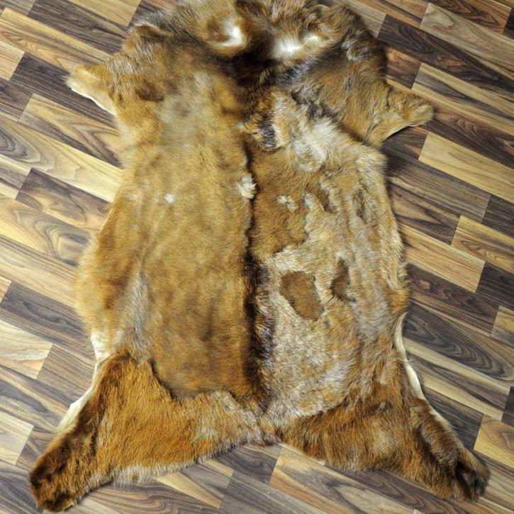 Island Schaffell Lammfell grau 95x65 Geschenk sheepskin #5620