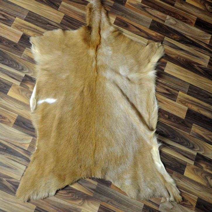 Island Schaffell Lammfell grau 95x60 Geschenk sheepskin #5622