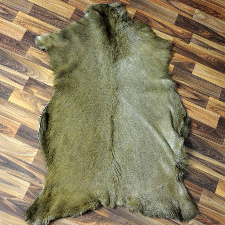 Island Schaffell Lammfell grau 90x60 Geschenk sheepskin #5628