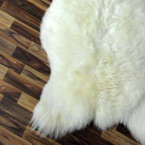 Hirschfell Hirsch 150x130 deer Jagd 1A Qualität #2341